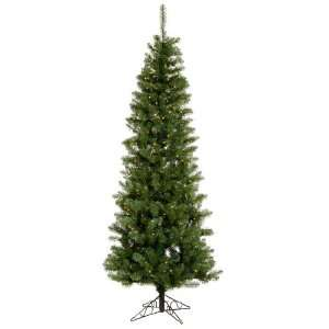 5.5 Pre Lit Salem Pine Pencil Artificial Christmas Tree