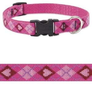 Lupine Puppy Love 3/4 in Adjustable Dog Collar (9in   13in
