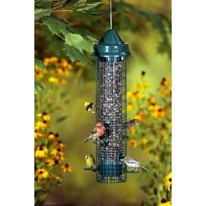Squirrel Buster Classic   Squirrel Proof Bird Feeder, 1.4