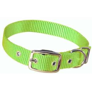 Hamilton 3/4 Single Thick Nylon Deluxe Dog Collar, 16, Lime Green